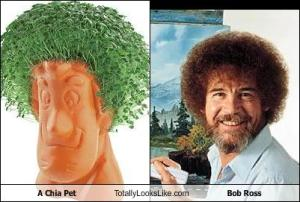 Chia Pet Chic